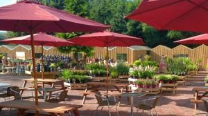 towneley-outdoor-eating-735x412